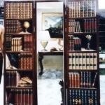 bookshelves-and-cat